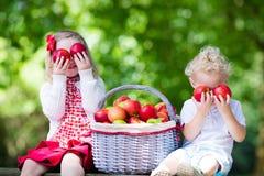 Enfants avec le panier de pomme Photographie stock libre de droits