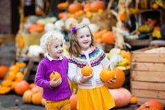 Enfants ayant l'amusement à la correction de potiron Photo libre de droits