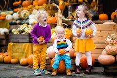 Enfants ayant l'amusement à la correction de potiron Photographie stock libre de droits
