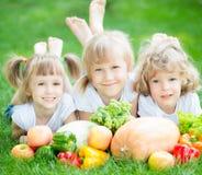 Enfants ayant le pique-nique Photographie stock libre de droits