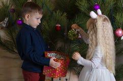 Enfants blancs préparant l'arbre de Noël avec des boules Photographie stock libre de droits