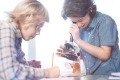 Enfants consacrés avec du charme travaillant à la tâche dans le cours de Biologie photos stock