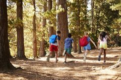 Enfants courant le long de Forest Trail On Hiking Adventure photos stock