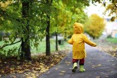 Enfants dans la promenade de parc d'automne photographie stock libre de droits