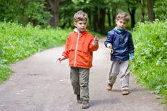 Enfants dans les bois photo libre de droits