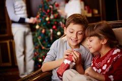 Enfants de mêmes parents curieux photos libres de droits