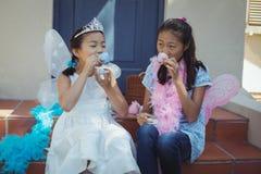 Enfants de mêmes parents dans le costume féerique ayant un thé Photographie stock libre de droits