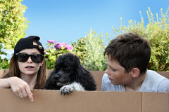 Enfants de mêmes parents et chien Photographie stock libre de droits