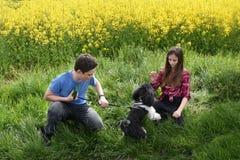 Enfants de mêmes parents et chien Photo libre de droits