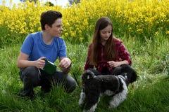 Enfants de mêmes parents et chien Photographie stock