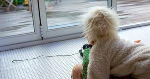 Enfants de mêmes parents jouant les uns avec les autres dans le salon 4k clips vidéos