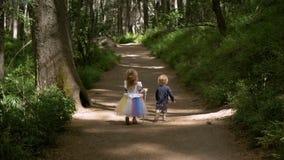 Enfants de mêmes parents marchant sur les bois banque de vidéos
