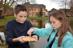 Enfants de mêmes parents partageant la pâtisserie Photos libres de droits