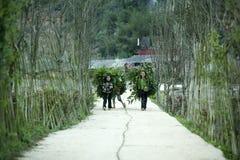 Enfants de minorité ethnique au village de Lung Cam photos stock