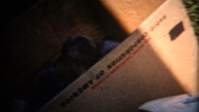 enfants (de vintage de 8mm) dans la boîte de réfrigérateur clips vidéos