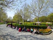 Enfants dessinant au parc de siècle Image libre de droits