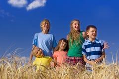 Enfants en céréale Images stock