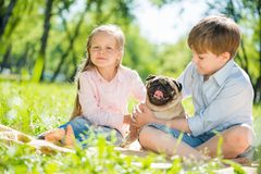 Enfants en parc avec l'animal familier Image stock