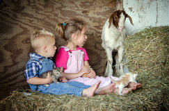 Enfants et animaux familiers de ferme Photo stock