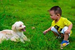 Enfants et chien de Havanese image libre de droits
