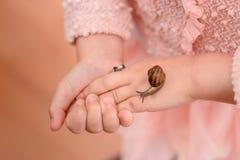Enfants et insectes Photos libres de droits