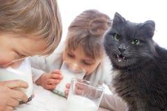 Enfants et lait de consommation de chat Photographie stock