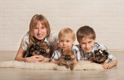 Enfants et petits chiens Images libres de droits