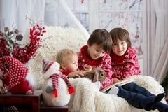 Enfants, frères de garçon, et lapin d'animal familier, séance de livre de lecture dans le fauteuil confortable un jour neigeux d' image libre de droits
