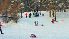 Enfants heureux glissant vers le bas sur des tubes de neige dans la forêt d'hiver banque de vidéos
