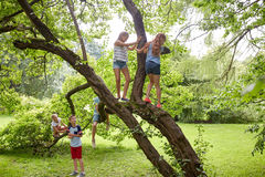 Enfants heureux grimpant à l'arbre en parc d'été Photographie stock