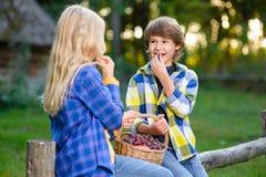 Enfants heureux mangeant des fruits de panier de pique-nique Photos libres de droits