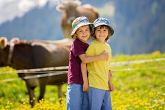 Enfants heureux marchant sur un chemin rural dans les Alpes suisses, printemps Photographie stock libre de droits
