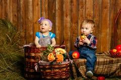 Enfants jouant à la ferme Image stock
