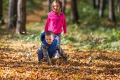 Enfants jouant avec des feuilles Photographie stock