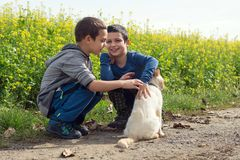 Enfants jouant avec le chat Photographie stock libre de droits