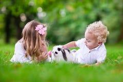 Enfants jouant avec le vrai lapin Photo stock