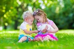Enfants jouant avec le vrai lapin Images stock