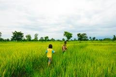 Enfants jouant dans la ferme d'usines de riz Images libres de droits