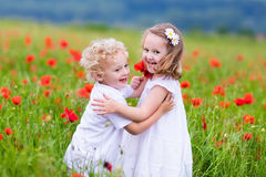 Enfants jouant dans le domaine de fleur rouge de pavot Images stock