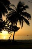 Enfants jouant quand couchers du soleil Photos stock