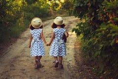 Enfants jumeaux heureux de soeurs Soeur de filles en parc, marchant sur la route, tenant des mains Lumière du soleil et vue de do Images stock