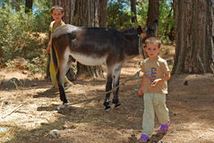 Enfants locaux avec l'âne, Turquie Photographie stock libre de droits
