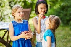 Enfants mangeant des cerises ensemble Image libre de droits