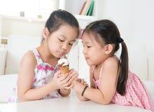 Enfants mangeant le cornet de crème glacée Photographie stock libre de droits