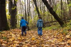 Enfants marchant dans la forêt Image libre de droits