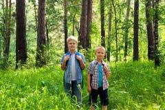 Enfants marchant dans la forêt Photo stock