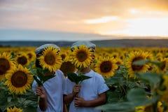Enfants mignons, frères de garçon avec le tournesol en tournesol f d'été Photos libres de droits