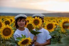 Enfants mignons, frères de garçon avec le tournesol en tournesol f d'été Photographie stock libre de droits