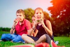 Enfants mignons mangeant la pastèque un jour ensoleillé Photos libres de droits