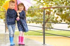 Enfants mignons sous le parapluie coloré Image stock